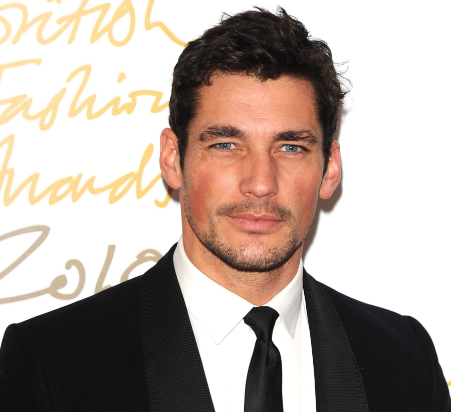 david gandy blog. By the way, you know My Gandy