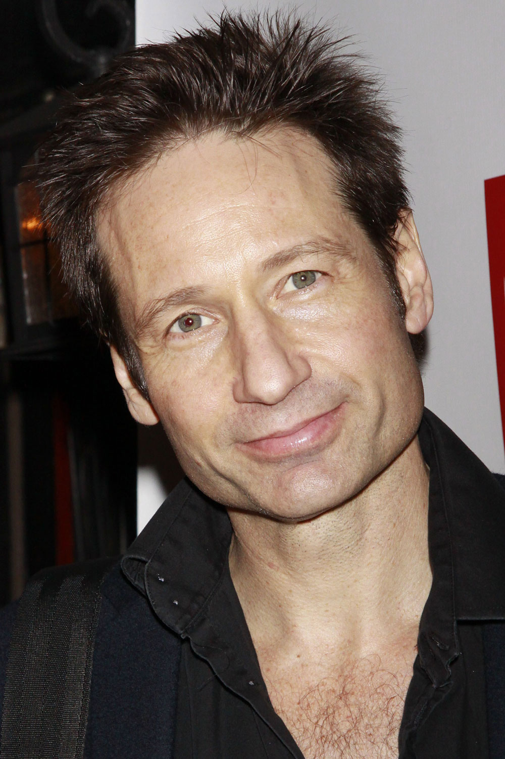 Yes  David Duchovny ma...