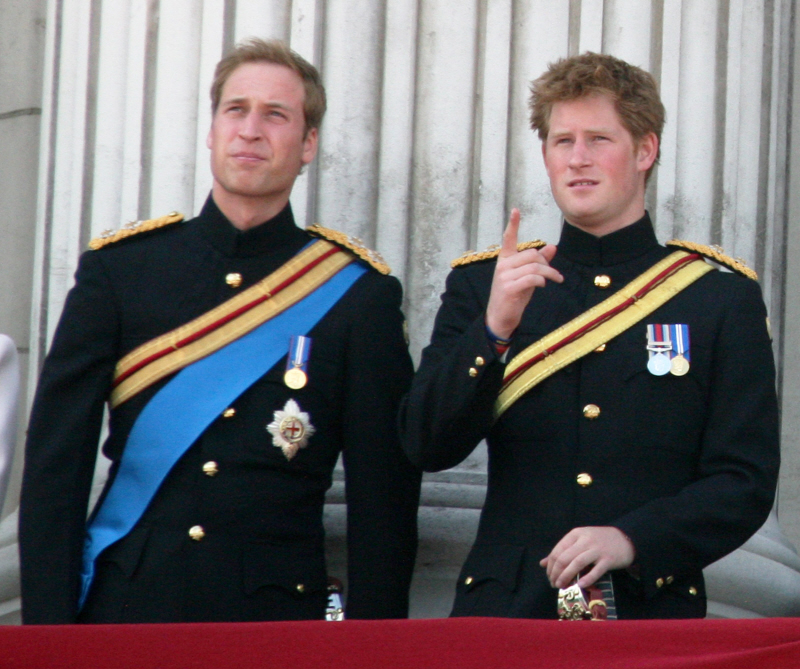 Is Prince William Going To Bone A Hooker