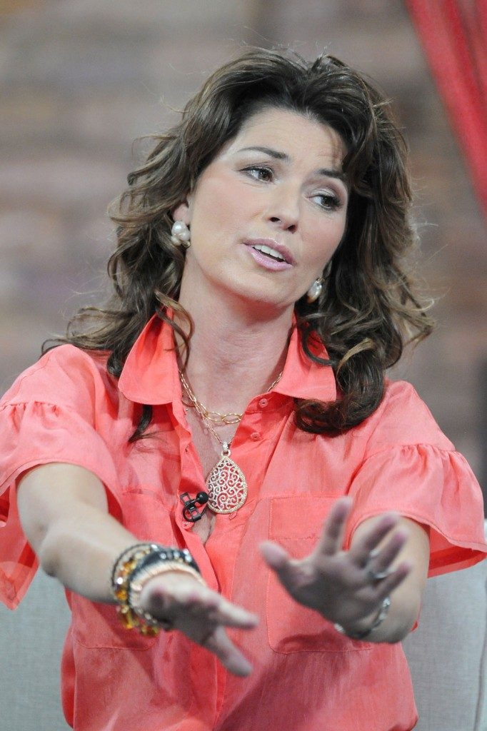 Shania Twain'S Other Woman