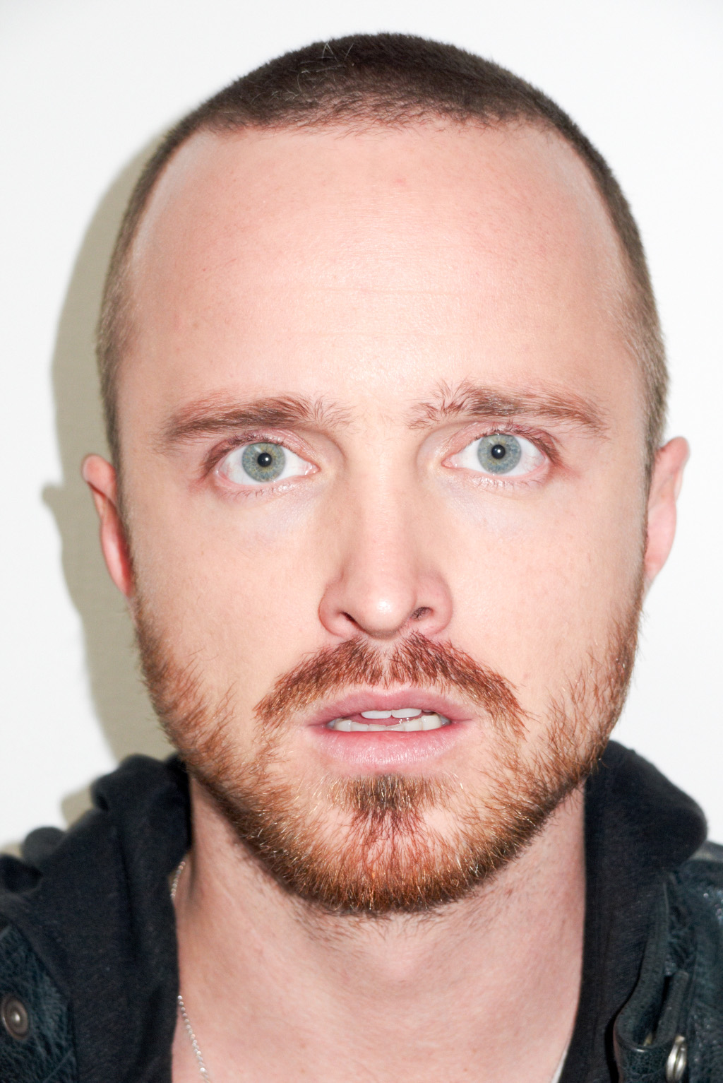 I love Aaron Paul of  ...
