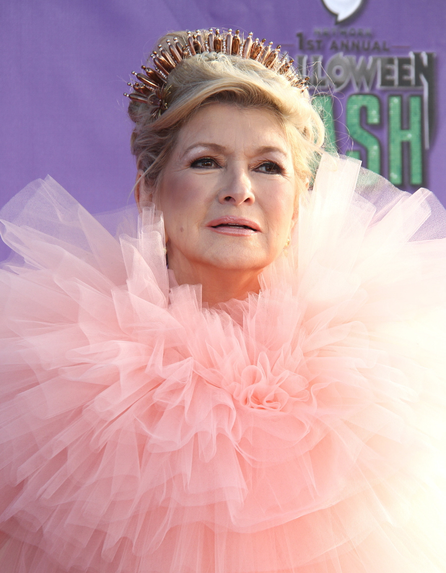 "Cele|bitchy | ""Martha Stewart dressed up as Glinda the Good Witch ..."