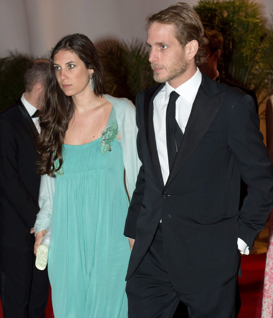 Not clear Andrea casiraghi tatiana santo domingo
