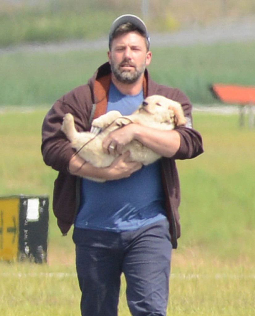 Ben Affleck Arrives In Atlanta With A New Puppy!