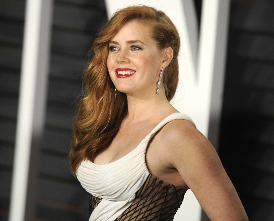 Amy Adams is our new Leo DiCaprio : when will Amy win an Oscar ... Amy Adams
