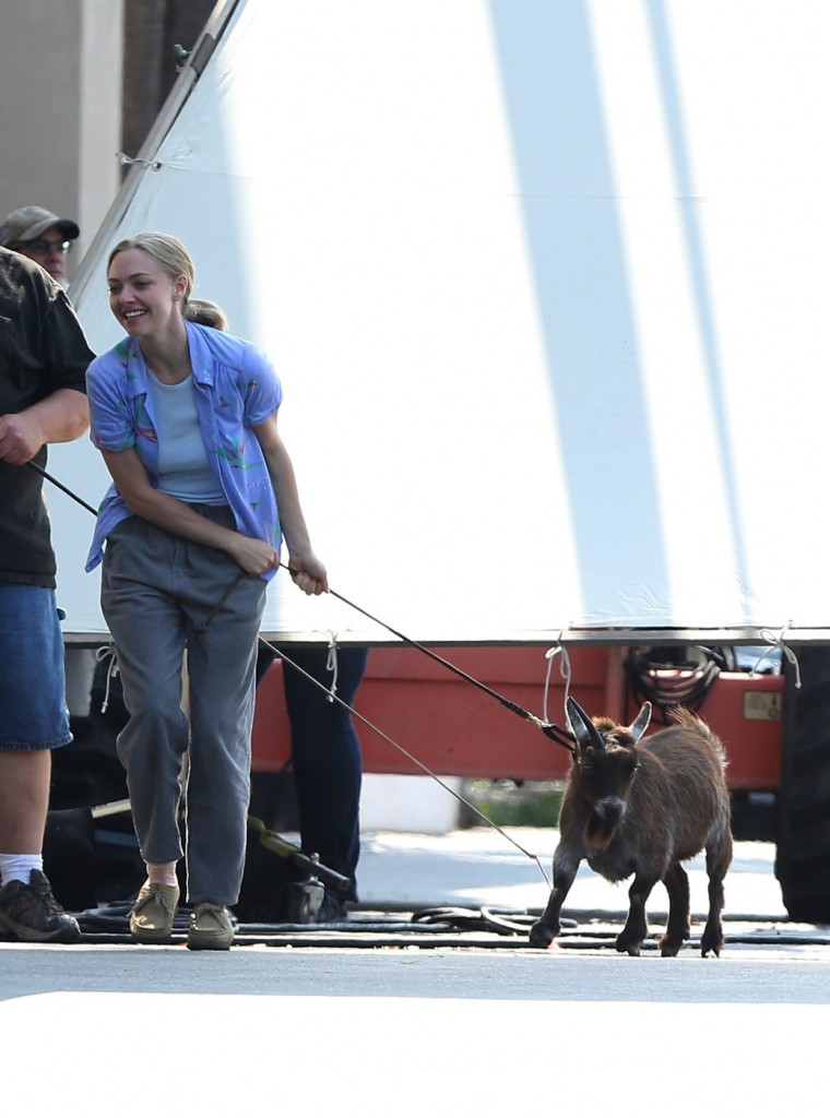 Amanda Seyfried struggles to take a goat for a walk on a leash on the set of The Clapper