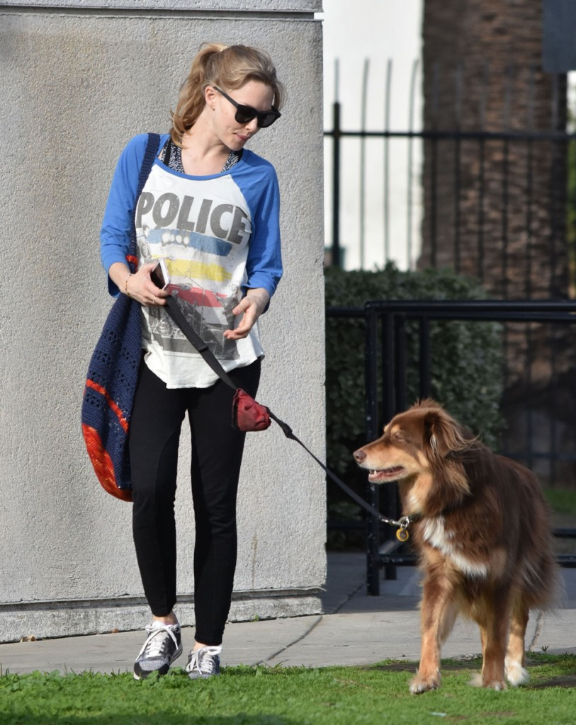 Pregnant Amanda Seyfried Walking Her Dog In West Hollywood  bitchy | Amanda Seyfried on her engagement: I've by no means been extra excited in my life FFN LRR Seyfried Amanda 121416 52258604 edited 1