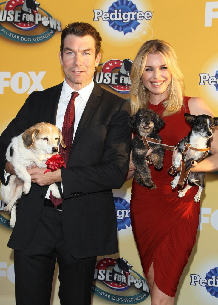 wenn21953366  bitchy | Jerry O'Connell & Rebecca Romijn have three canine & 2 cats that sleep on their mattress wenn21953366