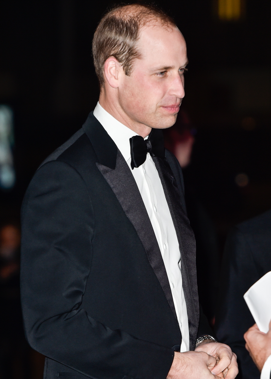 wenn30534964  bitchy | Prince William desires you to know that he's already again at work on the EAAA wenn30534964