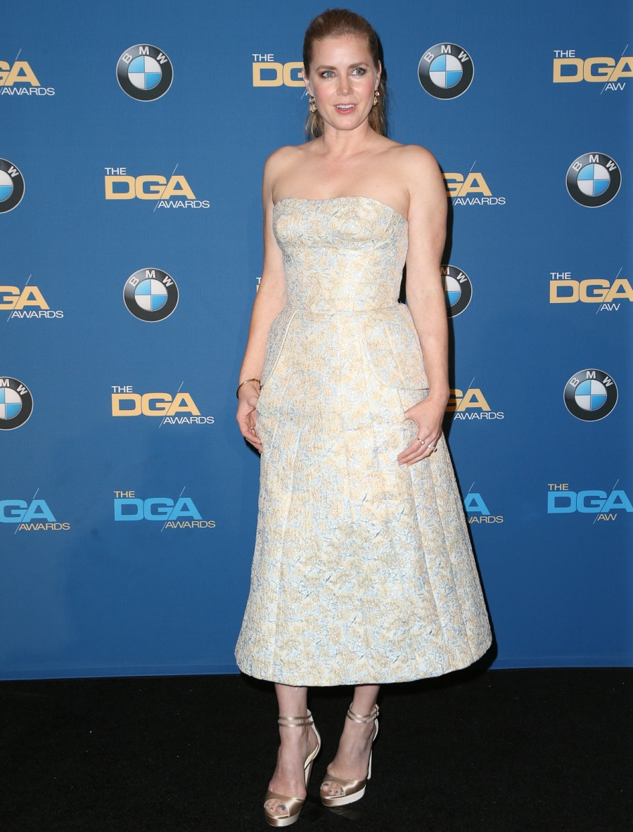 The 69th Annual Director Guild Awards - Press Room  bitchy | Nicole Kidman in beaded Marchesa on the DGA Awards: boring or lovely? wenn30856364