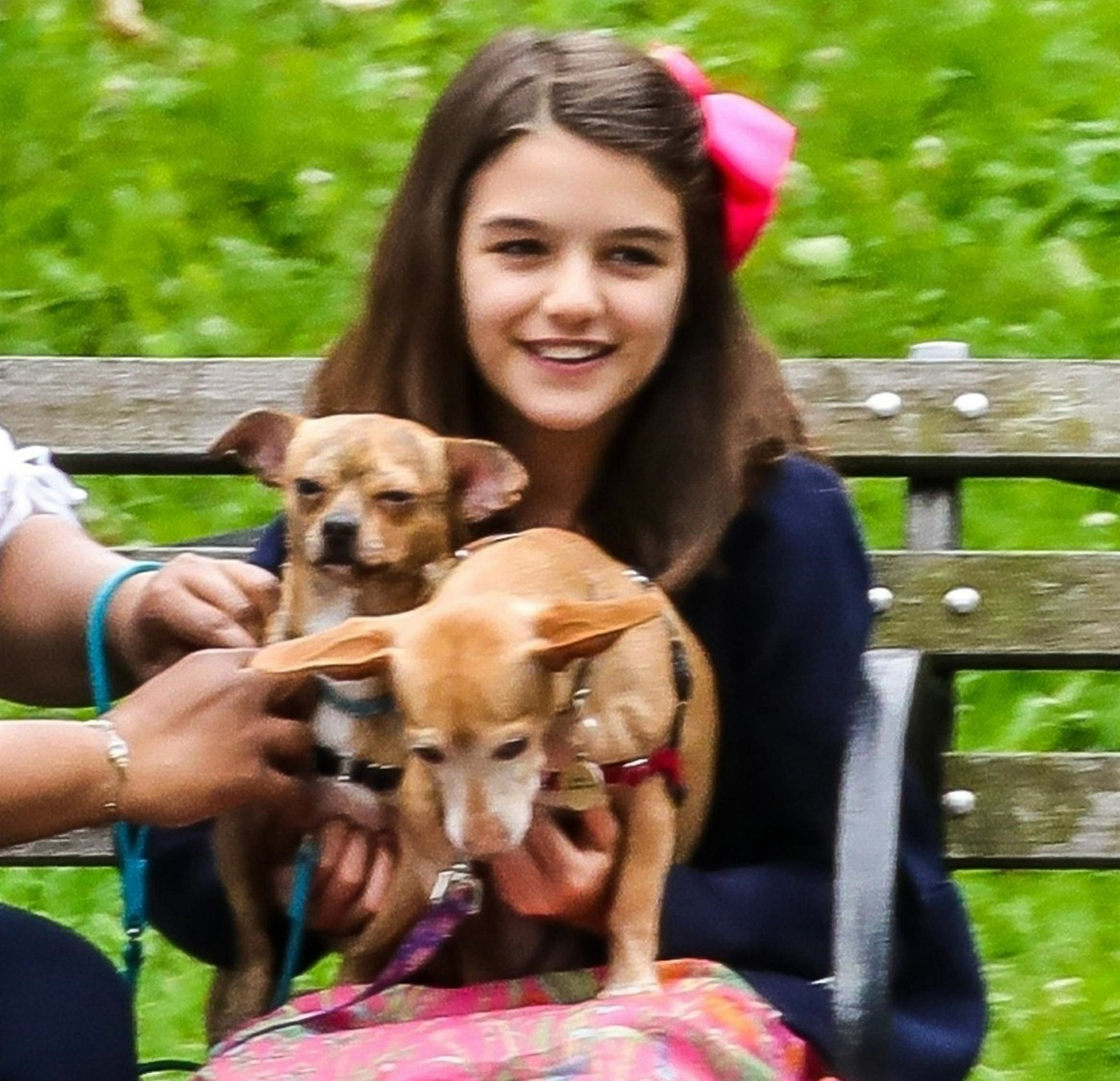 Injured Suri Cruise takes her dogs to the park in NYC